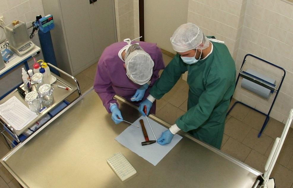 Ohledávání věcné stopy v genetické laboratoři Policie Jihočeského kraje