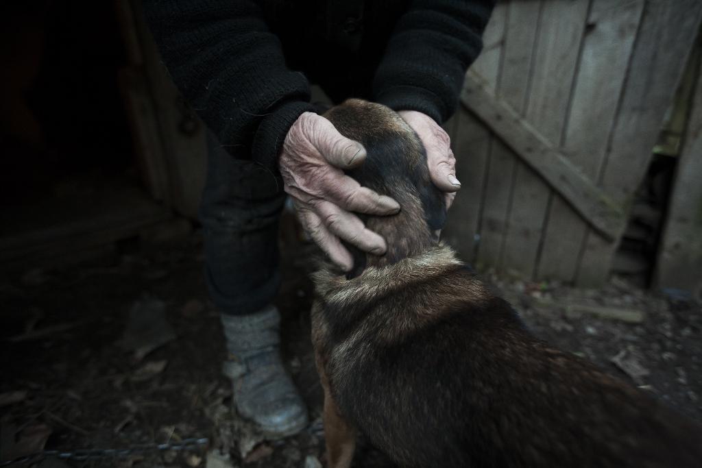 Fotografie z časosběrného dokumentu Baba z lesa, který na Dnech slovenské kultury v Českých Budějovicích představuje Lena Jakubčáková