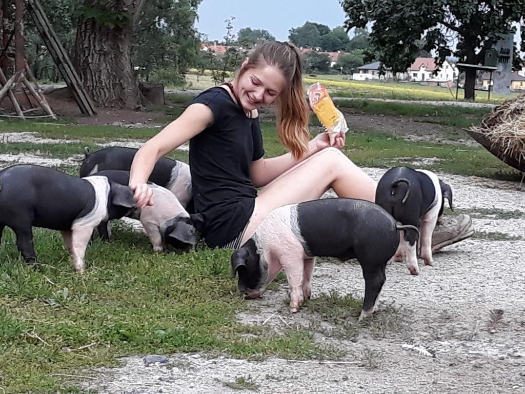 Rodina Jedličkových z Drahotěšic na Českobudějovicku chová přeštická černostrakatá prasata