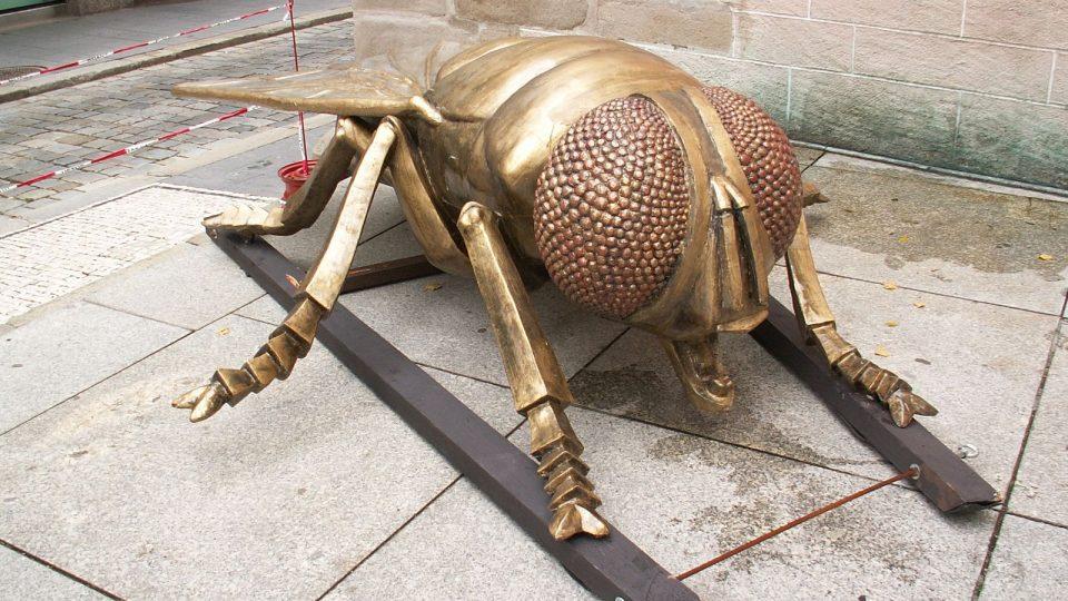 Zlatá moucha z českobudějovické Černé Věže