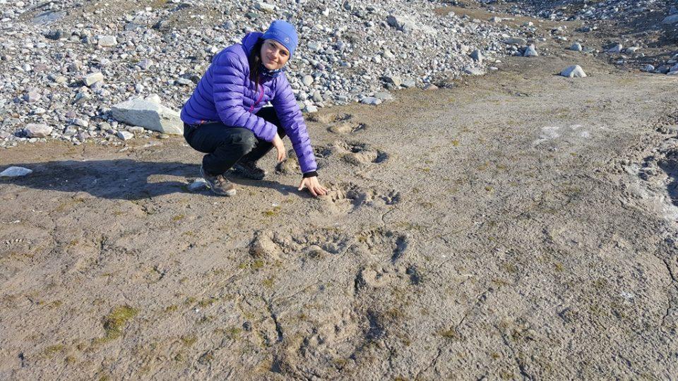 Při výpravě do arktické divočiny narazila Romana Lehmannová s vědci na stopy ledního medvěda