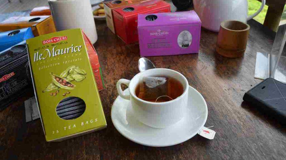 Ochutnávka vypěstovaného na místní čajové plantáži Bois Cheri na Mauriciu