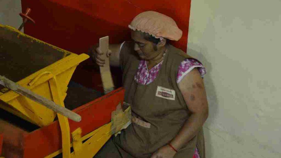 Zpracovávání čaje ve fabrice na ostrově Mauricius