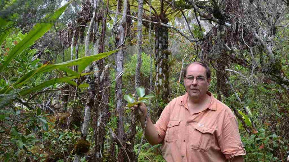 Pavel Chlouba v deštném lese na ostrově Reunion
