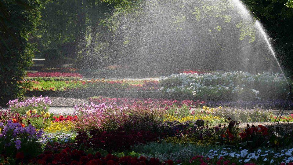Pavel Chlouba za vás navštívil zahrady v Belgii, Holandsku a Německu