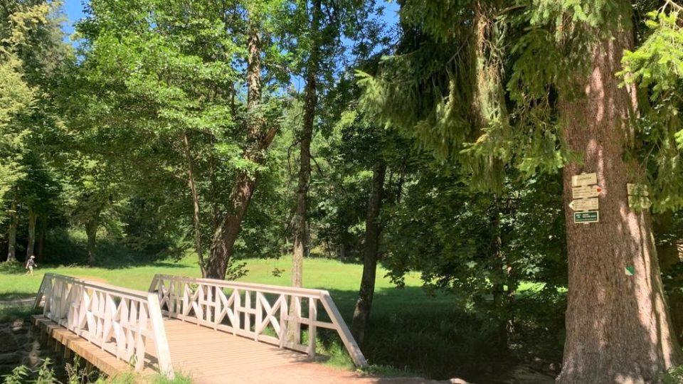 Terčino údolí u Nových Hradů inspirovalo účastníky výtvarných kurzů