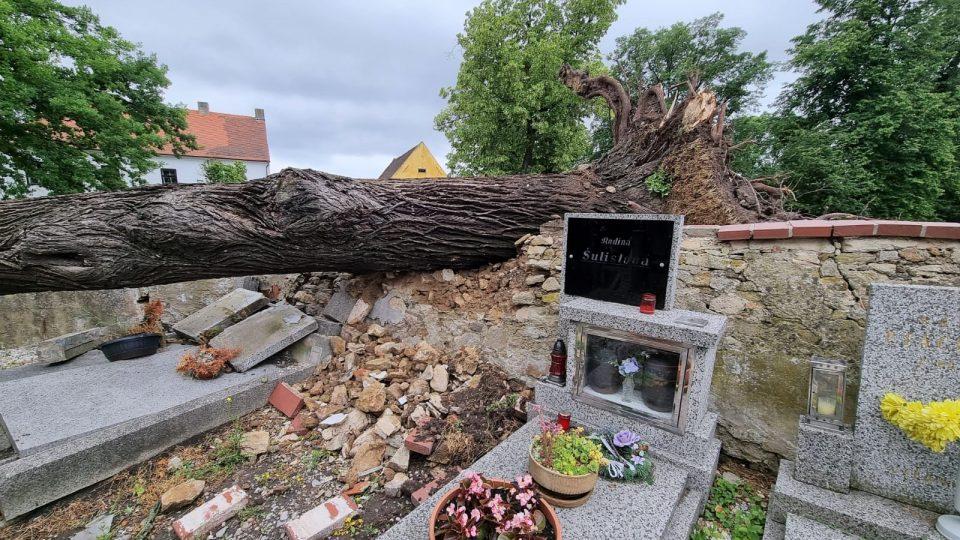Následky bouřky v Pištíně na Českobudějovicku. Vítr shodil lípu na hřbitov, poškozených je několik hrobů