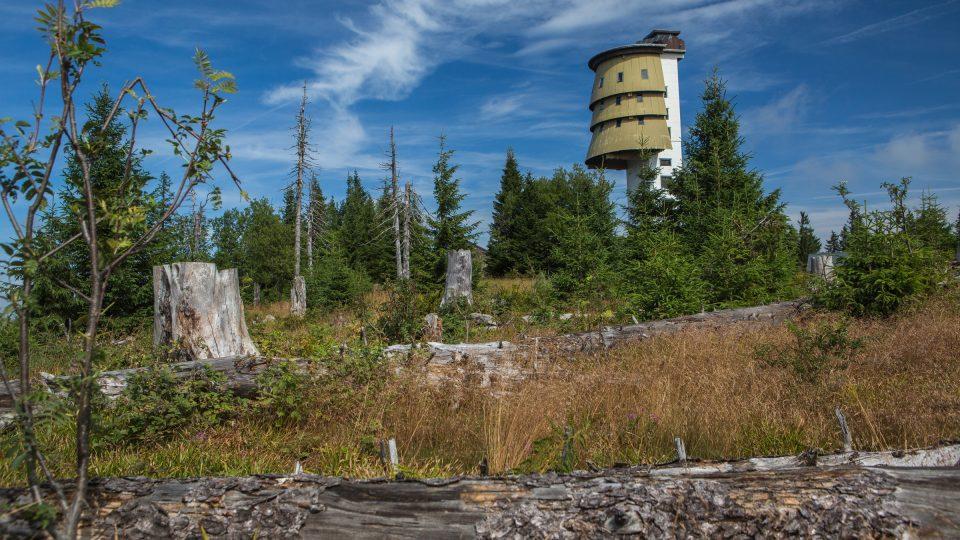 Bezzásahová zóna v okolí Poledníku v Národním parku Šumava