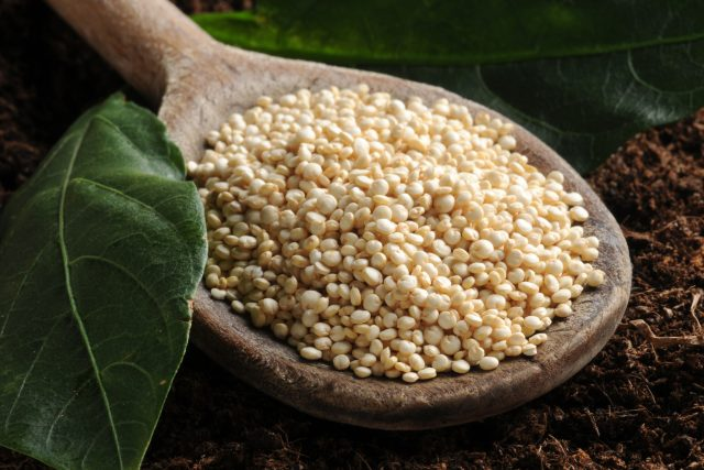 Quinoa | foto: Fotobanka Profimedia