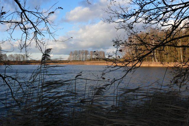 Naučná stezka Velký Lomnický - rybník