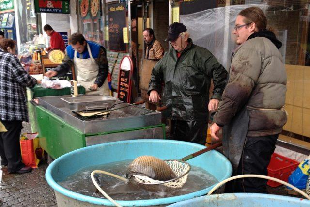 Nejžádanější vánoční rybou je stále kapr
