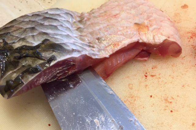 Rybí maso, kapr