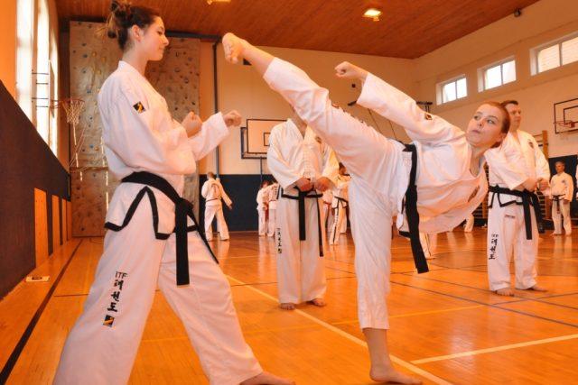 Třeboňský oddíl Taekwon-do má čerstvou vícemistryni Evropy. Čtrnáctiletá Anežka Čurdová (vpravo) si stříbrnou medaili přivezla z řecké Soluně