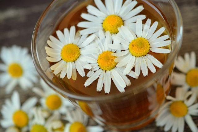 Heřmánek heřmánkový čaj květ bylina zdraví