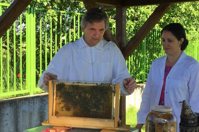 Vlastní včely chovají vědci Biologického centra Akademie věd a Jihočeské univerzity v Českých Budějovicích