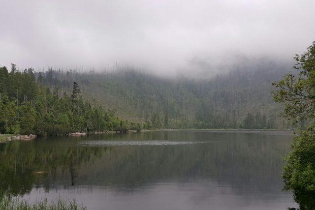 Plešné jezero, na jehož břehu byl nalezen nejstarší smrk