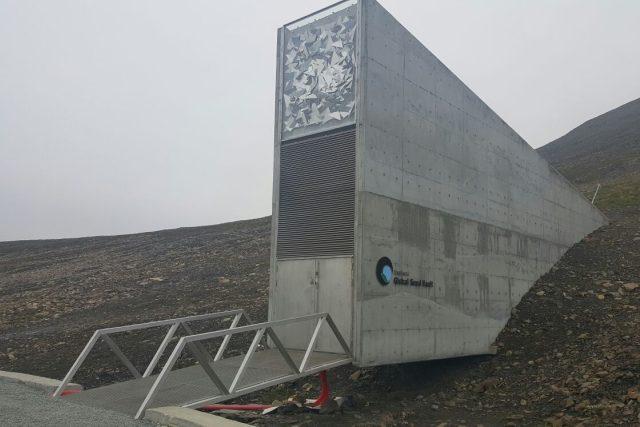 Globální úložiště semen v Arktidě - v kopci se skrývají stovky metrů chodeb a upravené prostorné sály. Zde jsou v regálech uložena semena v utěsněných sáčcích | foto: Romana Lehmannová,  Český rozhlas