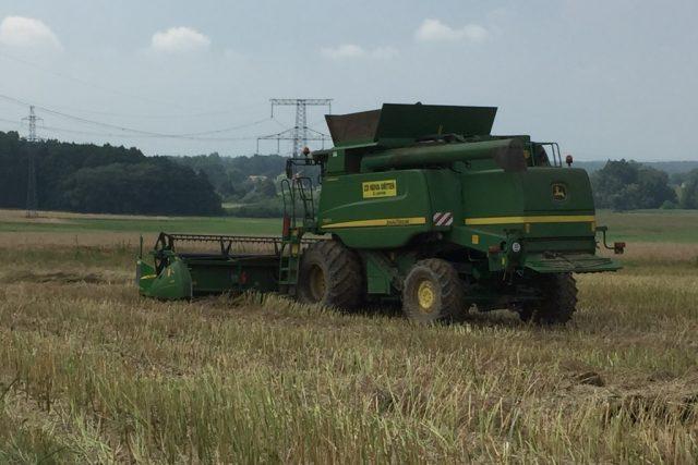 Kombajn sklizeň pole řepka zemědělství
