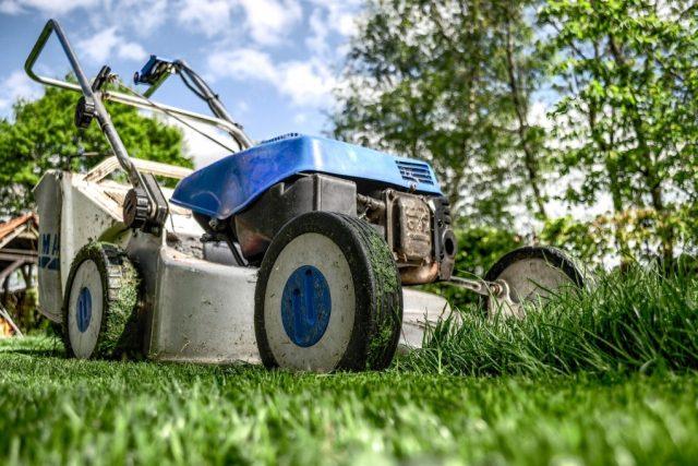 sekačka, trávník, tráva, zahrada, zahradničení