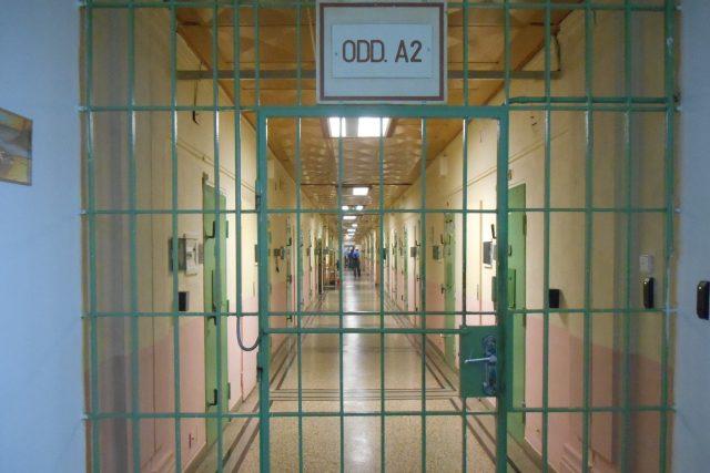 Brněnská vazební věznice v Bohunicích