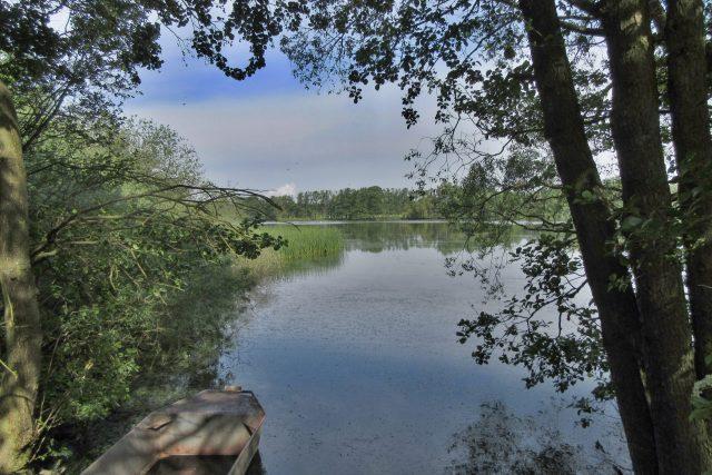 Na rybnících se hospodaří citlivě