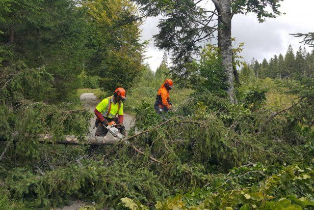 V Národním parku Šumava likvidují následky bouře. Na cestách jsou popadané stromy, další ještě mohou padat