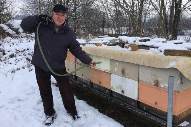 Včelař Aleš Křenek poslouchá bzukot včel v úlu. Díky tomu pozná, že je včelstvo uprostřed zimy v pořádku