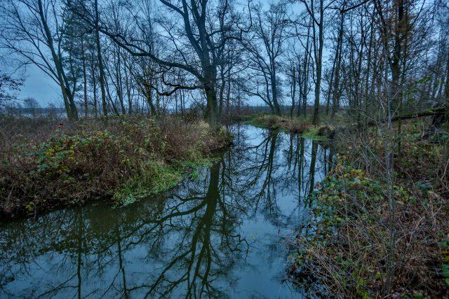 Zlatá stoka na Třeboňsku; vodní dílo, Štěpánek Netolický, povodí Lužnice, příroda