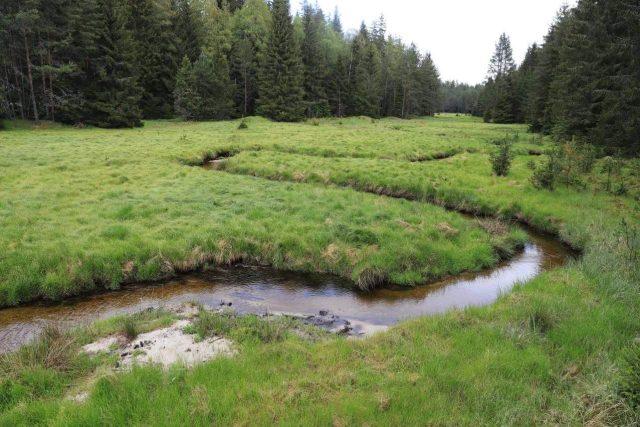 Potok Hučina na Šumavě byl v roce 2013 z hlubokého narovnaného kanálu přesunut do původního koryta | foto: Národní park Šumava