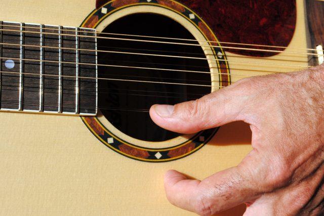 Dvanáctistrunná kytara