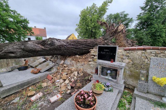 Následky bouřky v Pištíně na Českobudějovicku. Vítr shodil lípu na hřbitov,  poškozených je několik hrobů | foto: Lucie Hochmanová,  Český rozhlas,  Český rozhlas