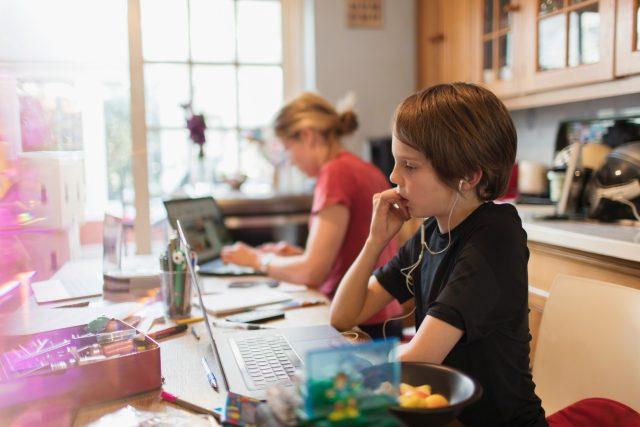 Domácí online výuka